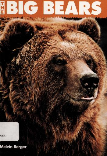 Cover of: The Big Bears   Melvin Berger